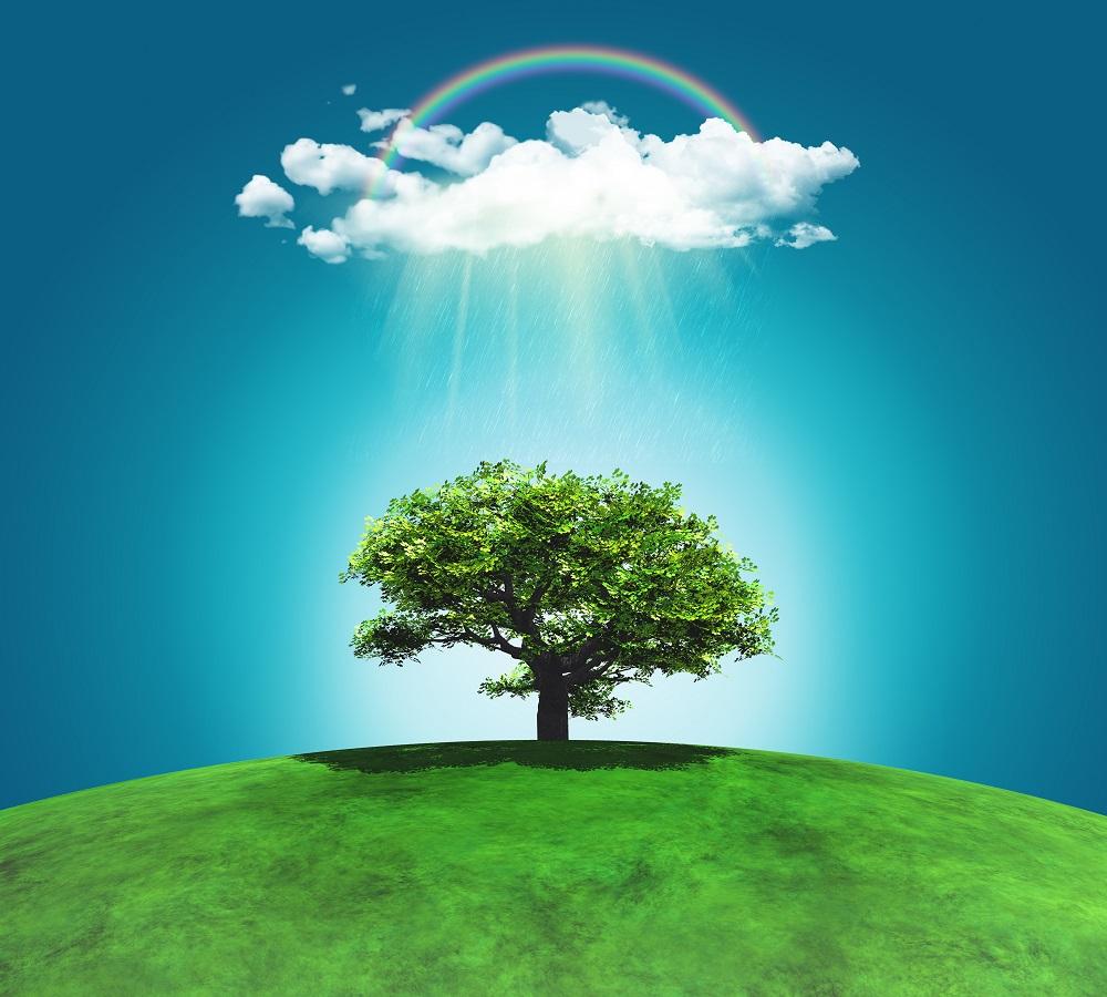 اهمیت روز درختکاری