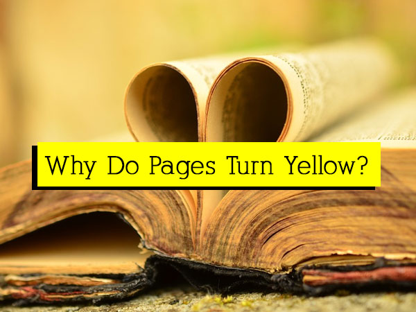 چرا کاغذ زرد میشود؟